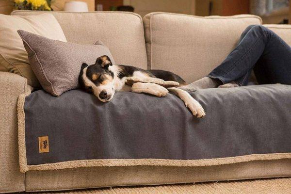 6 thói quen tưởng vô hại nhưng lại khiến tuổi thọ ghế sofa bị rút ngắn
